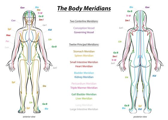 The Body Meridians Chart